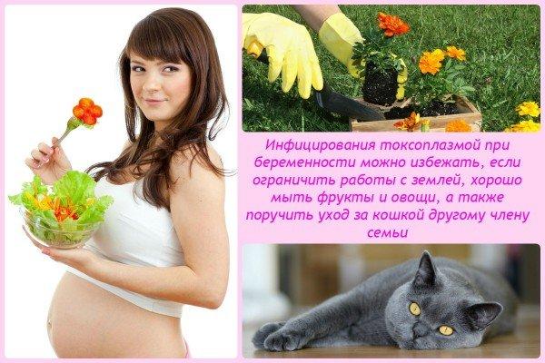 Инфицирования токсоплазмой при беременности можно избежать, если ограничить работы с землей, хорошо мыть фрукты и овощи, а также поручить уход за кошкой другому члену семьи