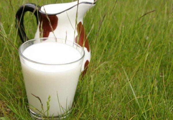 Непастеризованное молоко