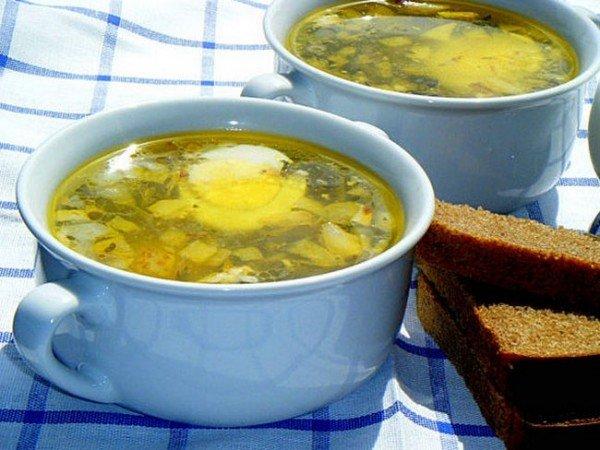 Суп из щавеля, зелёный борщ