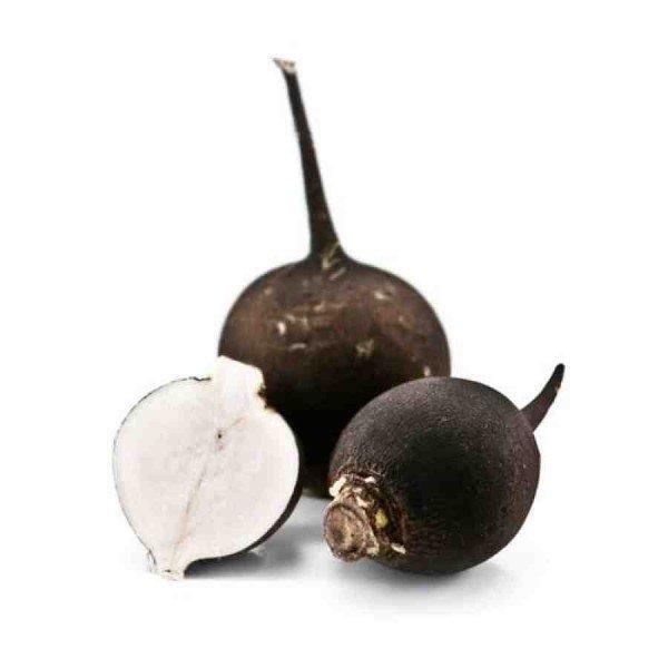 Чёрный корнеплод редьки