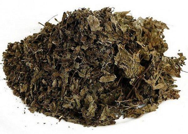 Почечный чай Orthosiphon stamineus Benth