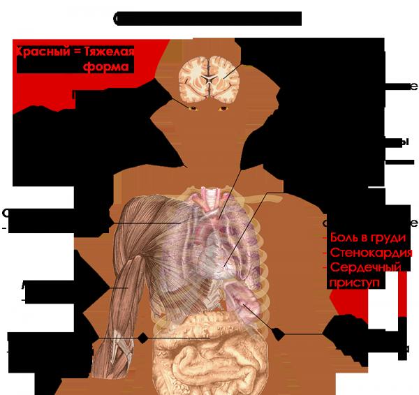 Проявления анемии