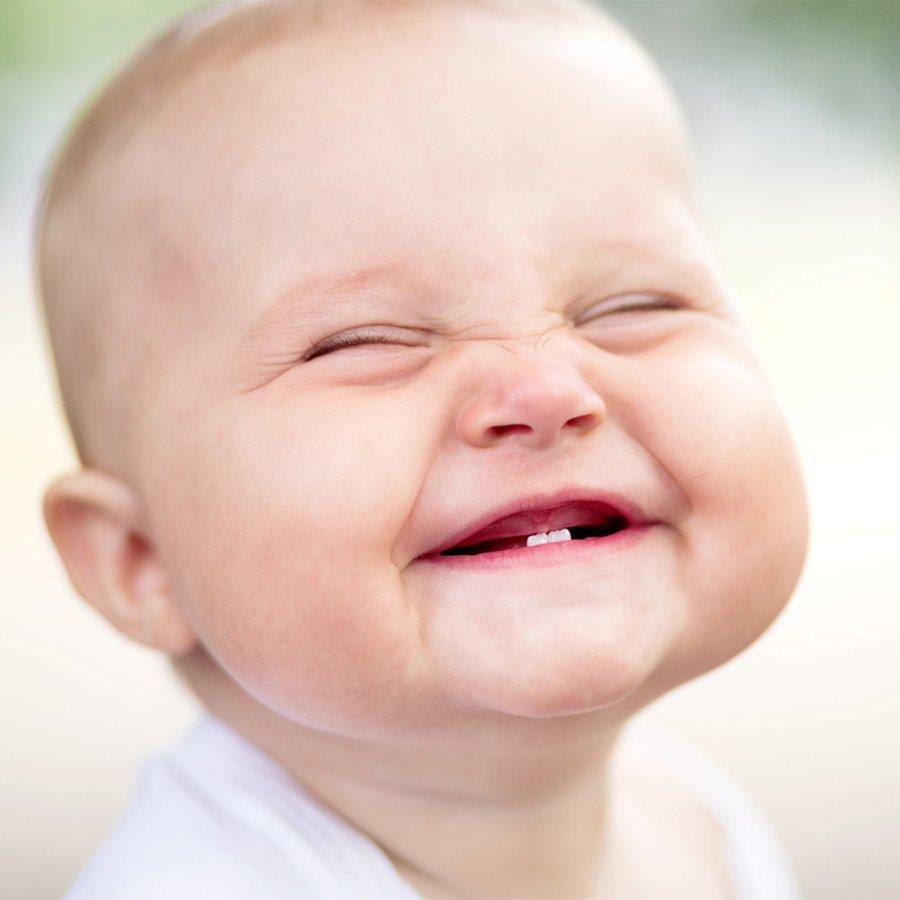 В ожидании первого зуба: сроки, порядок и схема прорезывания молочных зубов у ребёнка