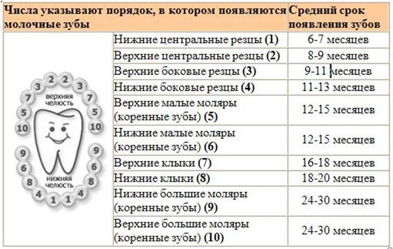 для ресниц: какая бывает температура при прорезывании зубов у грудничков выбирают такие, чтобы