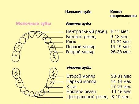 Симптомы прорезывания зубов у детей после года