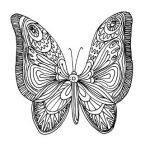 Графический рисунок-бабочка