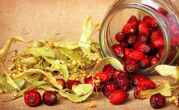 Чай из плодов шиповника и липового цвета