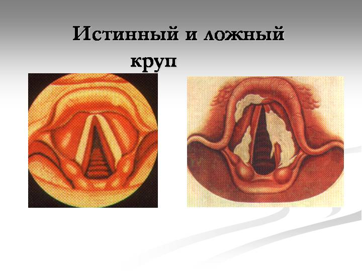 Вера православная  Феофан духовная жизнь
