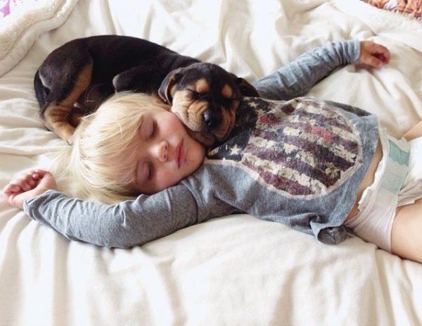 Малыш, не боясь, спит один с щенком