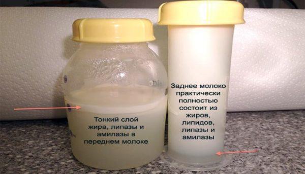 Определили жирность грудного молока по слою жира