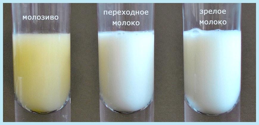 Какого цвета должно быть молоко у кормящей мамы