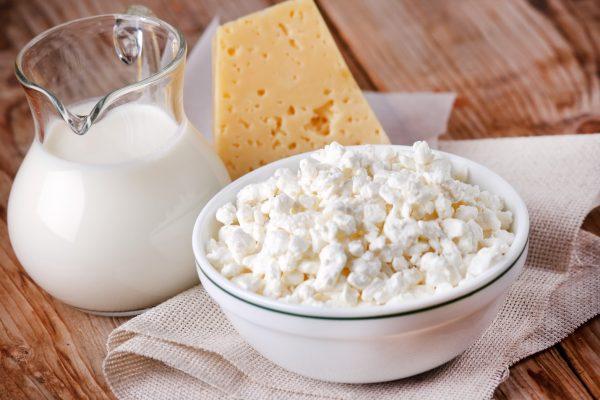 Молоко, творог и сыр на столе
