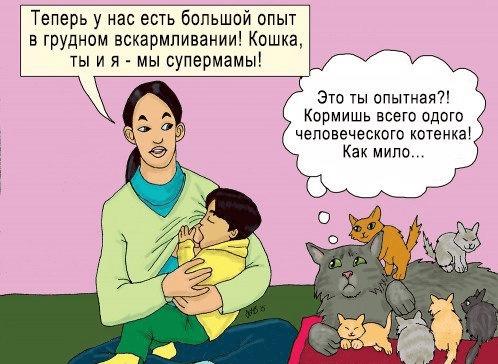 Комикс о ГВ: про женщину и кошку