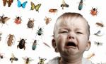 Родители, проявив заботу и фантазию, могут помочь ребёнку справиться с боязнью насекомых